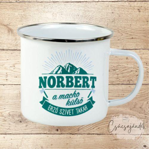 Neves fémbögre - Norbert
